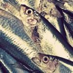 オメガ3系食品の種類と健康効果|脂肪酸の効能