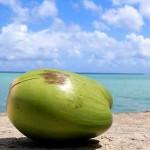 ココナッツオイルの効能効果|強力な抗酸化パワーで若返る!