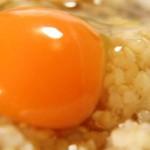 消化の悪い食べ物|肉・魚・野菜・果物・穀類