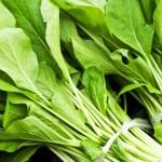 ほうれん草の栄養と効能|鉄を効率よく吸収するには?