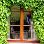 暑さ対策・窓に断熱シートは有効?|猛暑2016年の対策はコレ!
