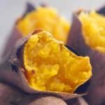 美味しいさつまいもの種類と見分け方選び方|甘味は外見でわかる!