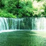 硝酸態窒素で水道水が汚染されてるって本当?