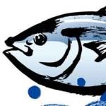 幻の魚スマ お取り寄せ通販と値段|DHA・EPA豊富で味もいい!