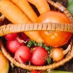 無農薬野菜は危険なのか安全なのか?